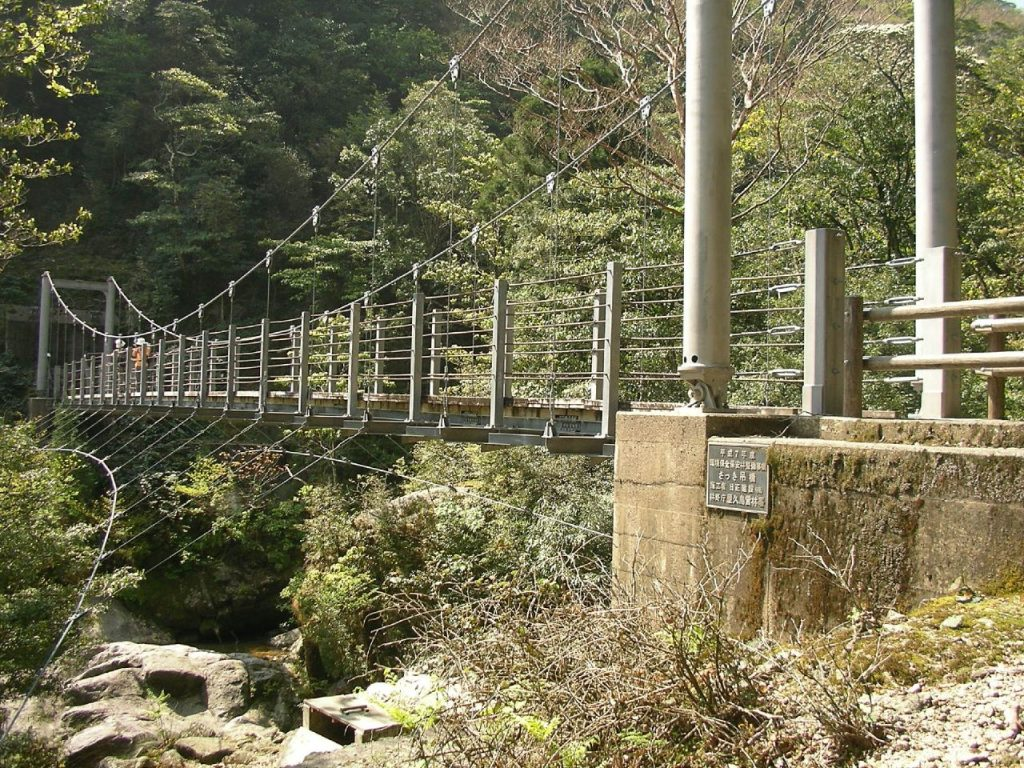 Shiratani Unsuikyo(Yakushima) 白谷雲水峡(屋久島)