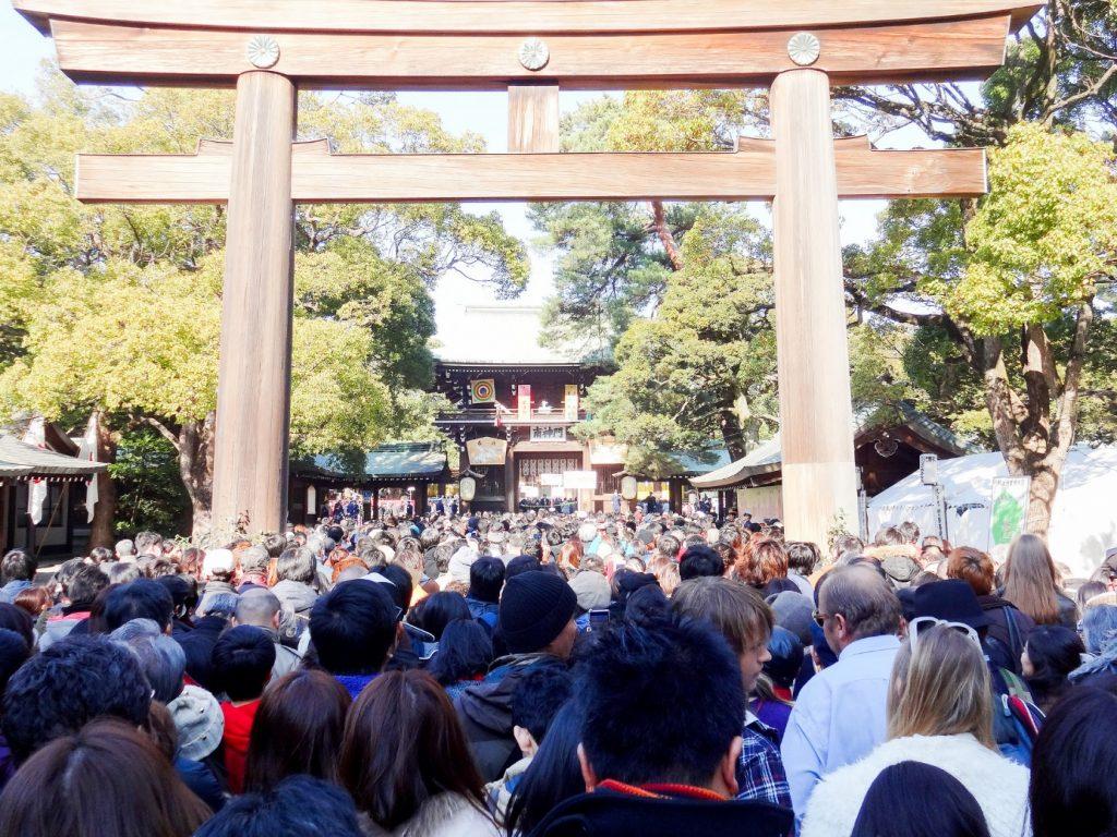 Meiji Shrine: Hatsumode