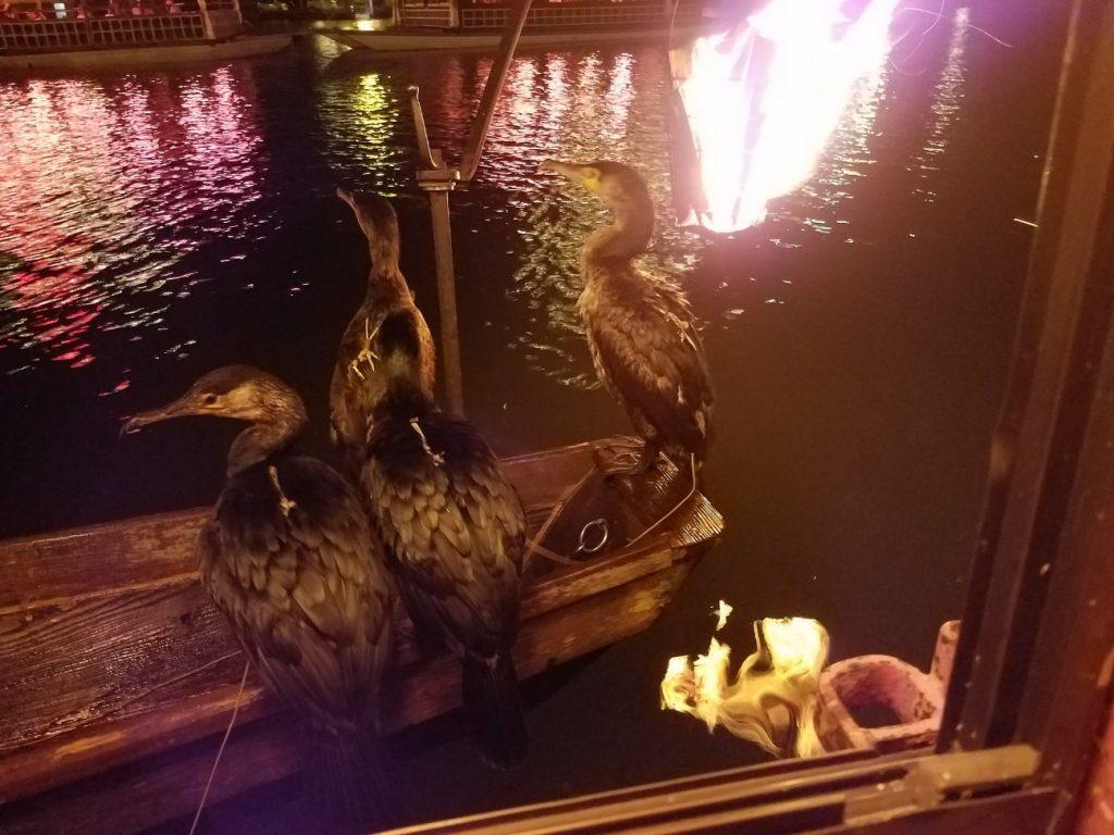 2017年夏休み 大分・日田 福岡・朝倉
