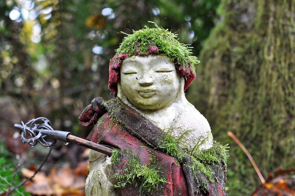 Jizo In the rain forest