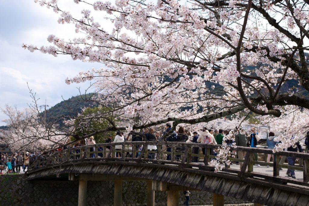 140405-6_嵐山 Arashiyama_16