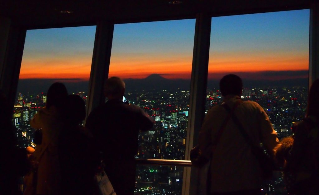 Tokyo city view in the sunset light. 夕暮れの東京