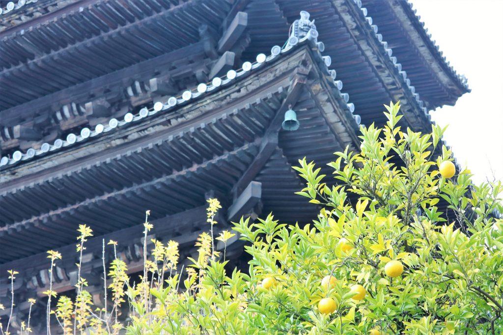 法観寺(ほうかんじ)