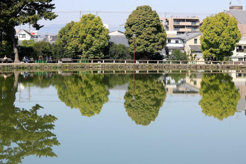 猿沢池(さるさわのいけ)