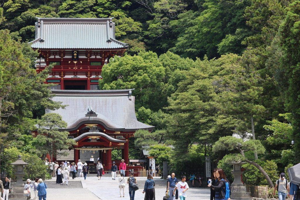 12年ぶりに訪れる鶴岡八幡宮、相変わらずの賑やかさです。