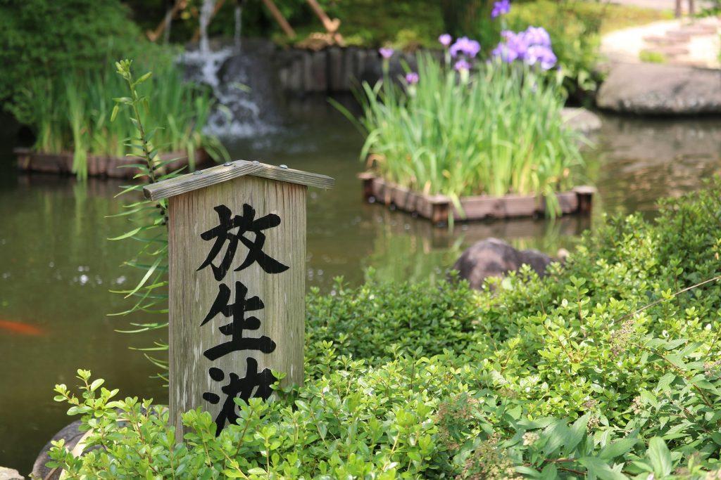 放生池(ほうじょうち)