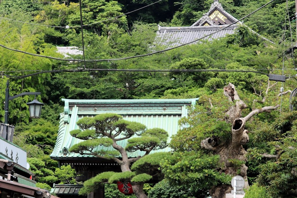 長谷寺。下に山門が、上に観音堂が見えます。