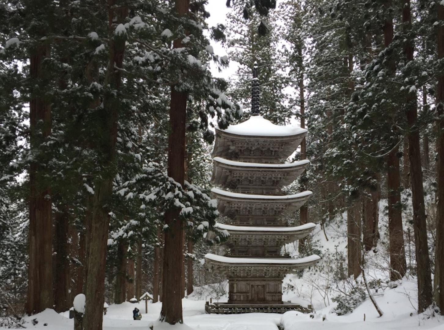 羽黒山五重塔では、杉並木を歩きながら風情を味わおう